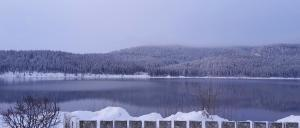 Winterpanorama, Schluchsee