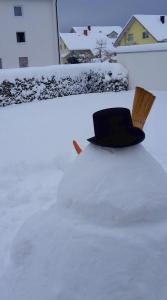 Schneemann blickt in die Ferne